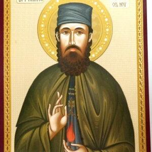 Icoana Efrem Sirul